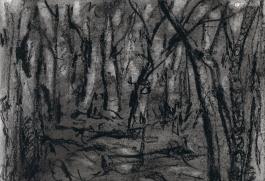 charcoal - at dusk